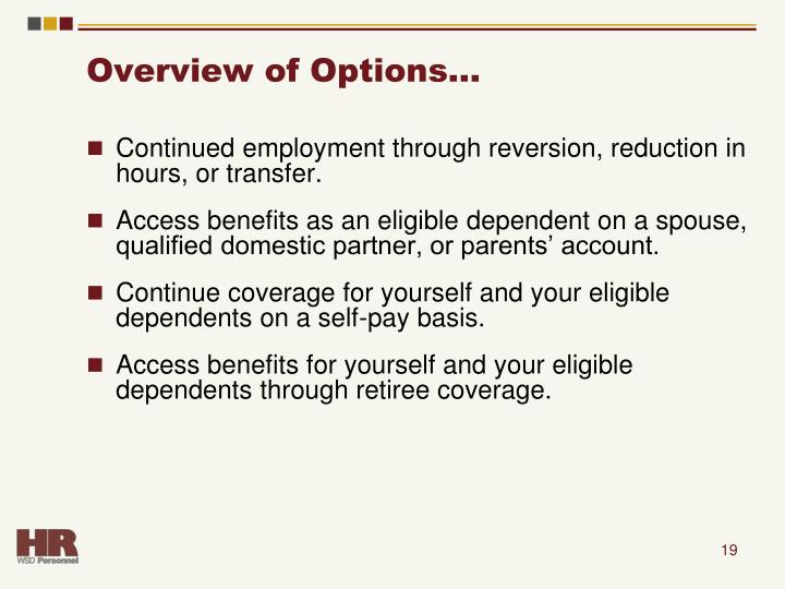 Overview of Options…