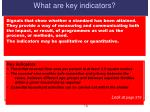 what are key indicators
