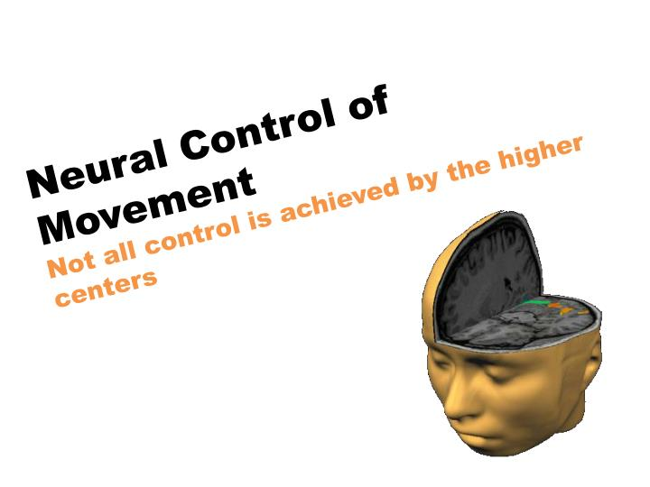 Neural Control of Movement