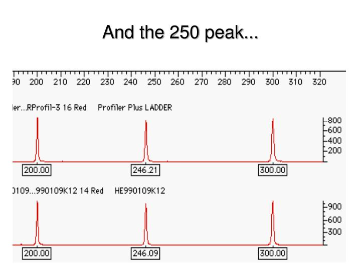 And the 250 peak...