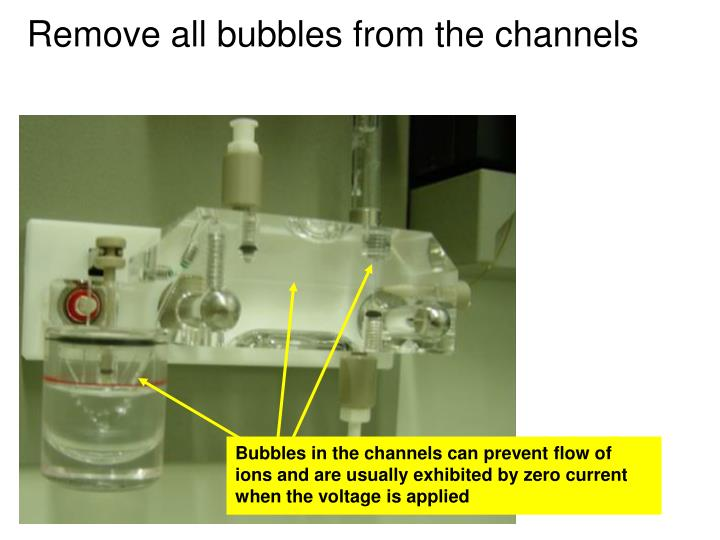 Remove all bubbles from the channels