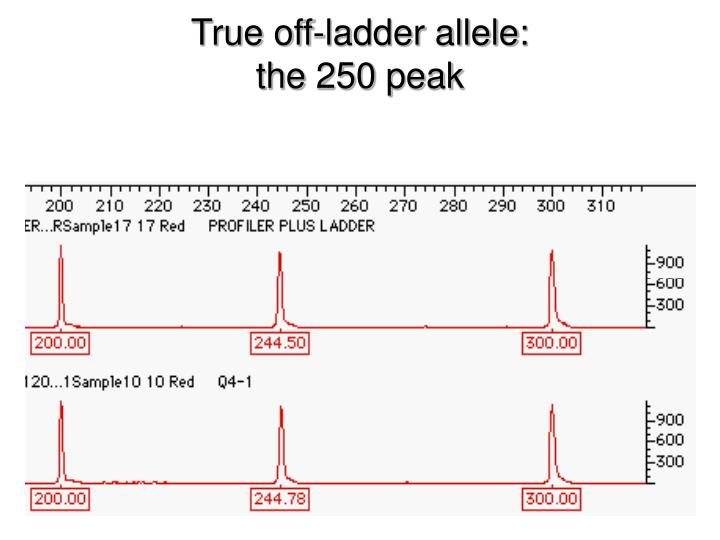 True off-ladder allele: