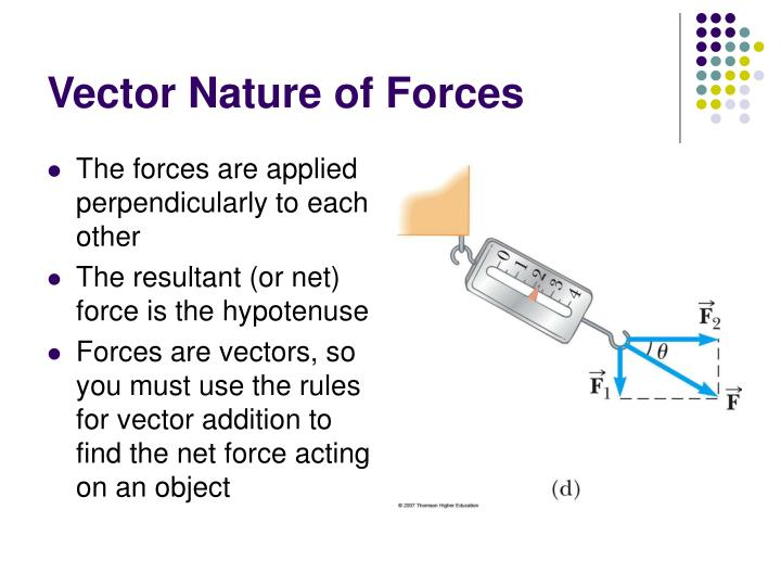 Vector Nature of Forces