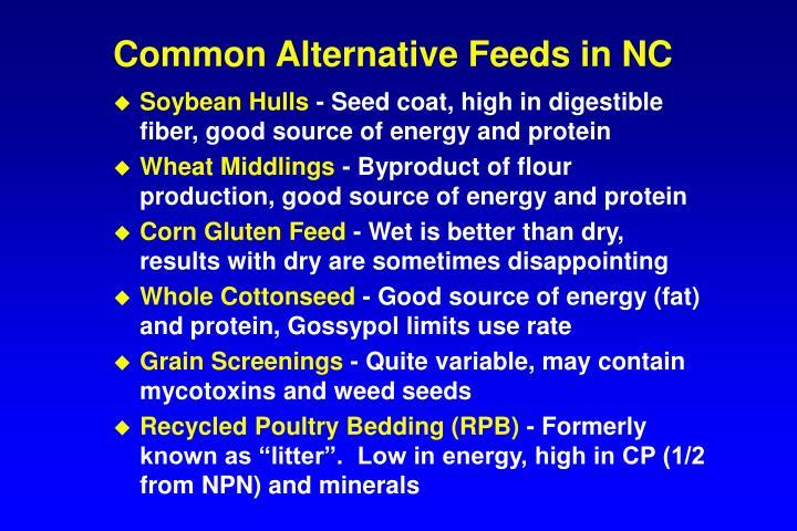 Common Alternative Feeds in NC