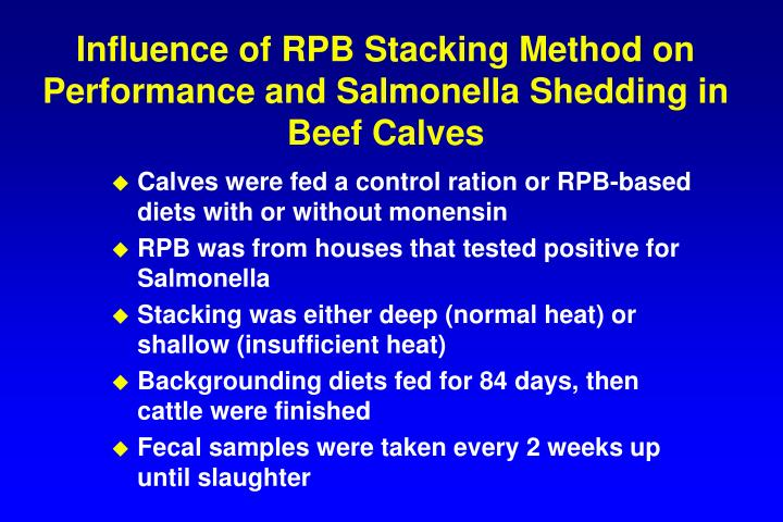 Influence of RPB Stacking Method on Performance and Salmonella Shedding in Beef Calves
