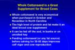whole cottonseed is a great supplement for brood cows