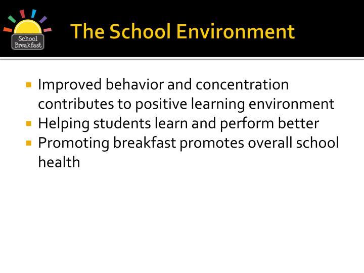 The School Environment