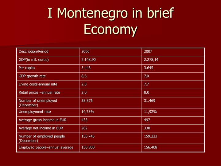 I Montenegro in brief