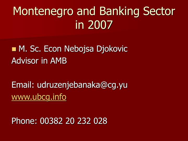 Montenegro and Banking Sector in 2007
