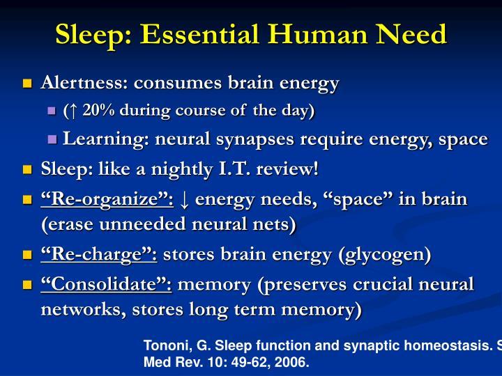 Sleep: Essential Human Need