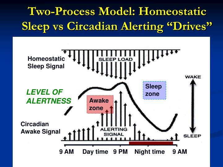 "Two-Process Model: Homeostatic Sleep vs Circadian Alerting ""Drives"""