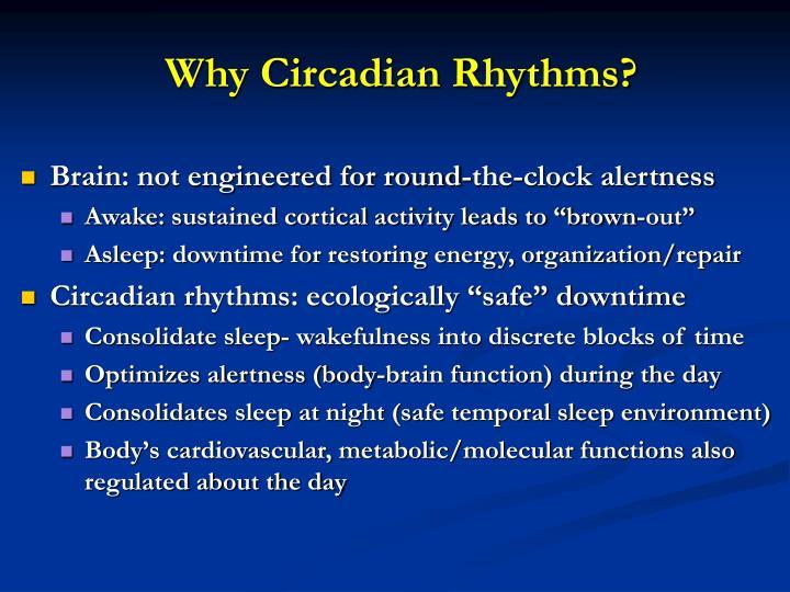 Why Circadian Rhythms?