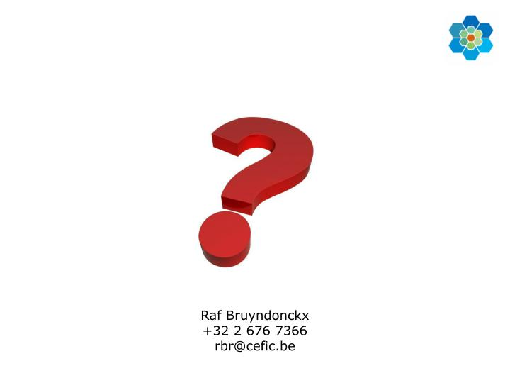 Raf Bruyndonckx