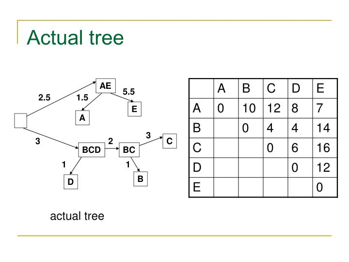 Actual tree