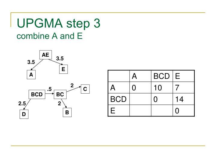 UPGMA step 3