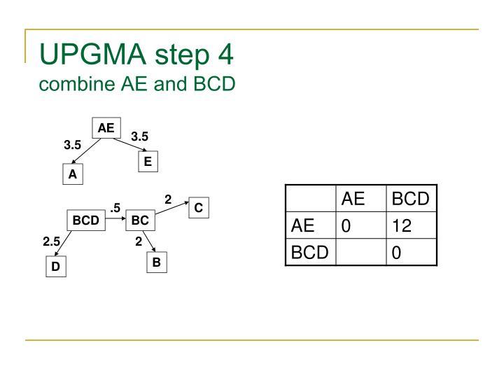 UPGMA step 4