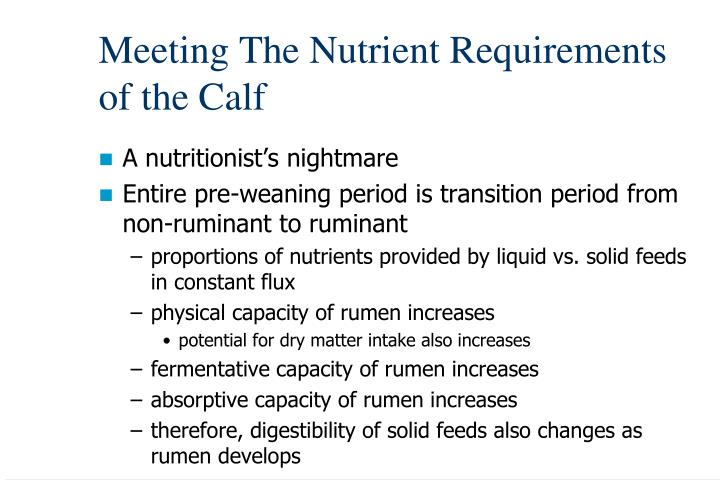 Meeting the nutrient requirements of the calf