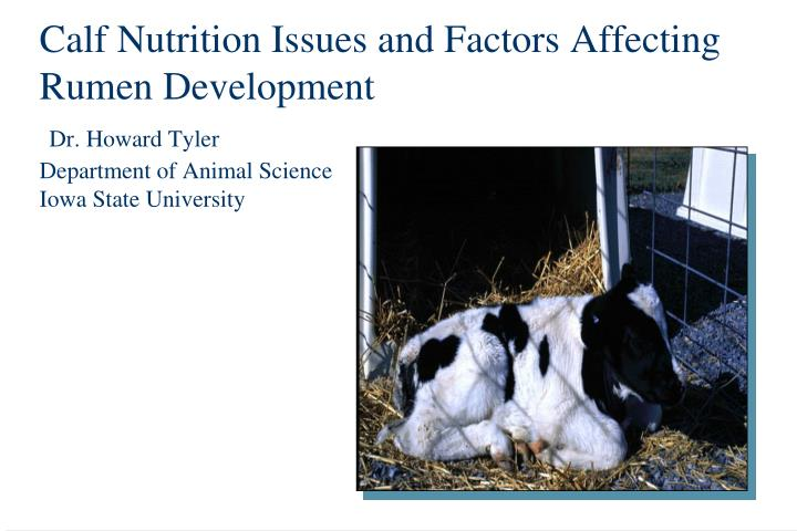 Calf Nutrition Issues and Factors Affecting Rumen Development