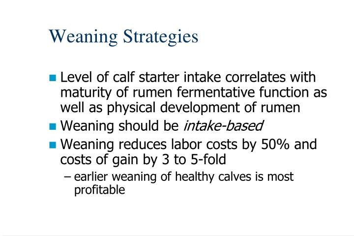 Weaning Strategies