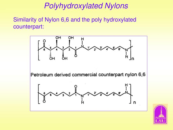 Polyhydroxylated Nylons