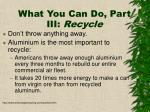 what you can do part iii recycle