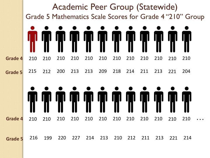 Academic Peer Group (Statewide)