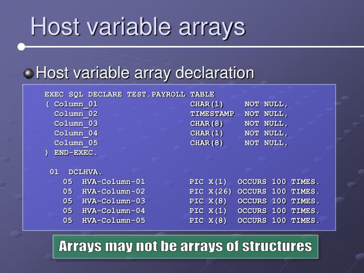Host variable arrays