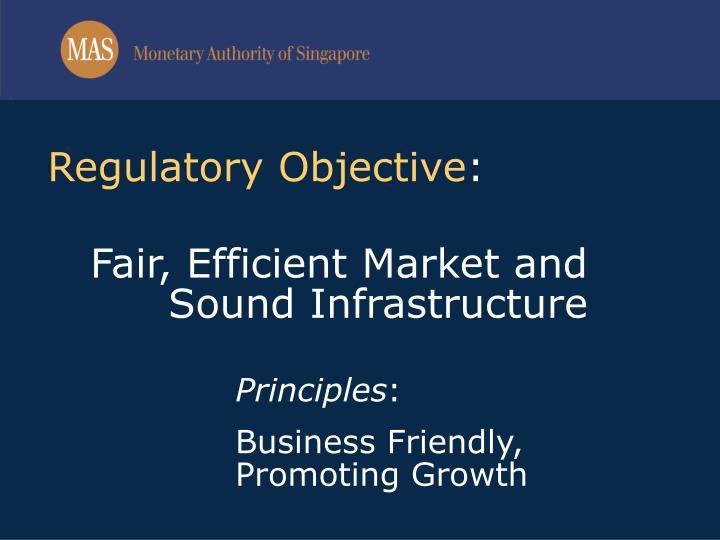 Regulatory Objective