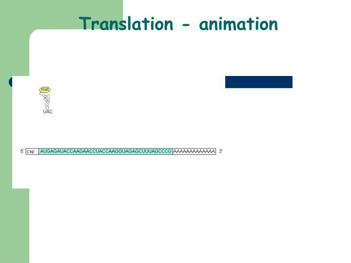 Translation - animation
