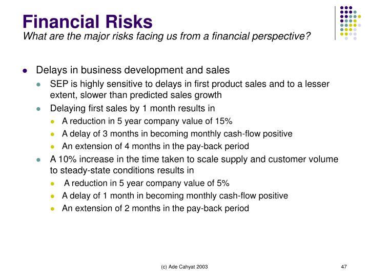 Financial Risks