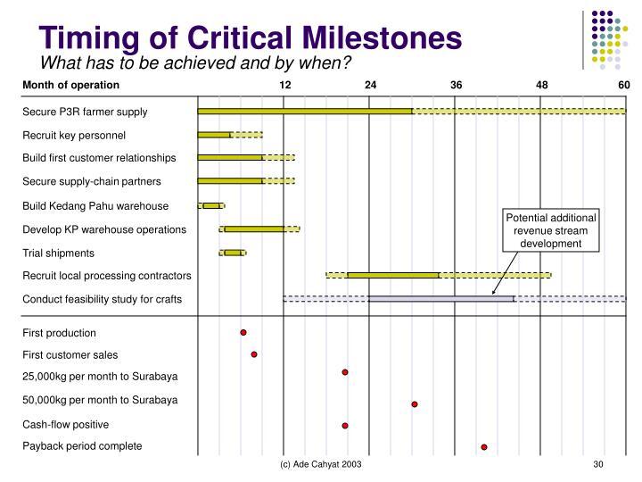Timing of Critical Milestones