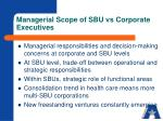 managerial scope of sbu vs corporate executives