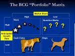 the bcg portfolio matrix