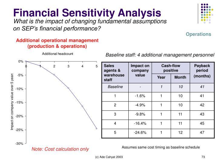 Financial Sensitivity Analysis
