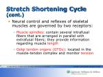 stretch shortening cycle cont