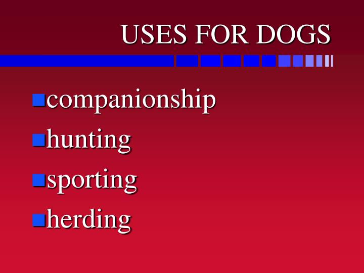 USES FOR DOGS