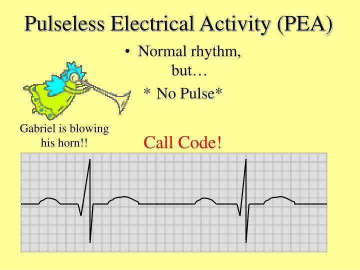 Pulseless Electrical Activity (PEA)
