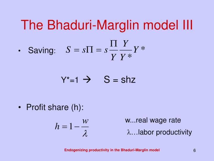The Bhaduri-Marglin model III