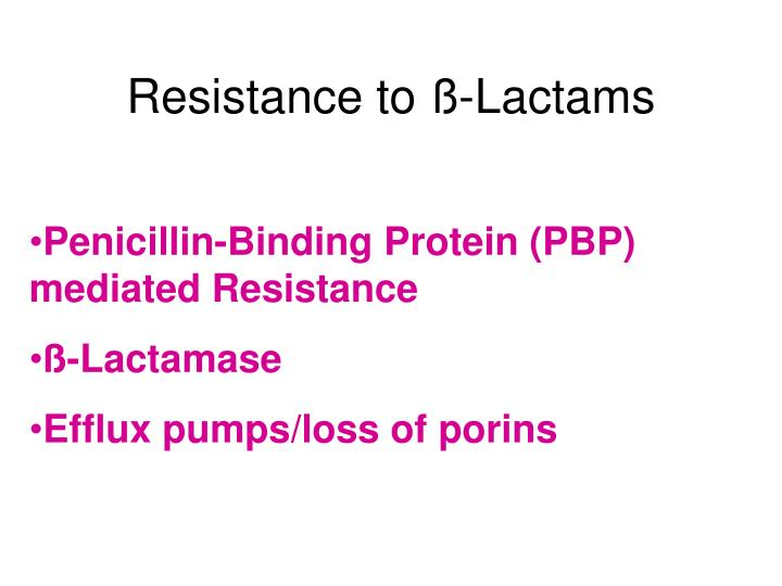Resistance to ß-Lactams