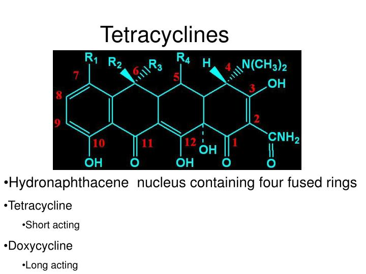 Tetracyclines