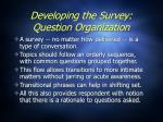developing the survey question organization1