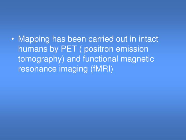 Mapping has been carried out in intact humans by PET ( positron emission tomography) and functional magnetic resonance imaging (fMRI)