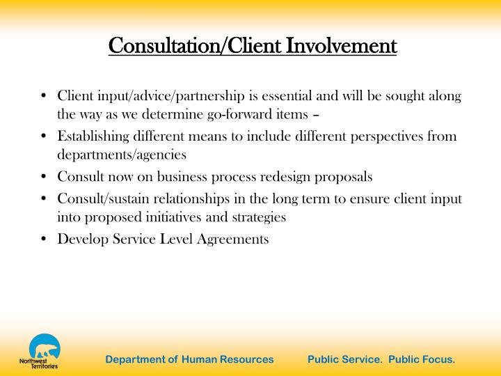 Consultation/Client Involvement