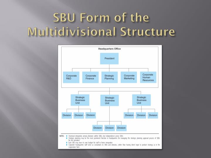 SBU Form of the Multidivisional Structure