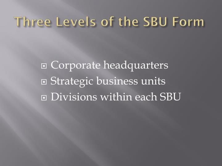 Three Levels of the SBU Form