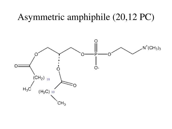 Asymmetric amphiphile (20,12 PC)