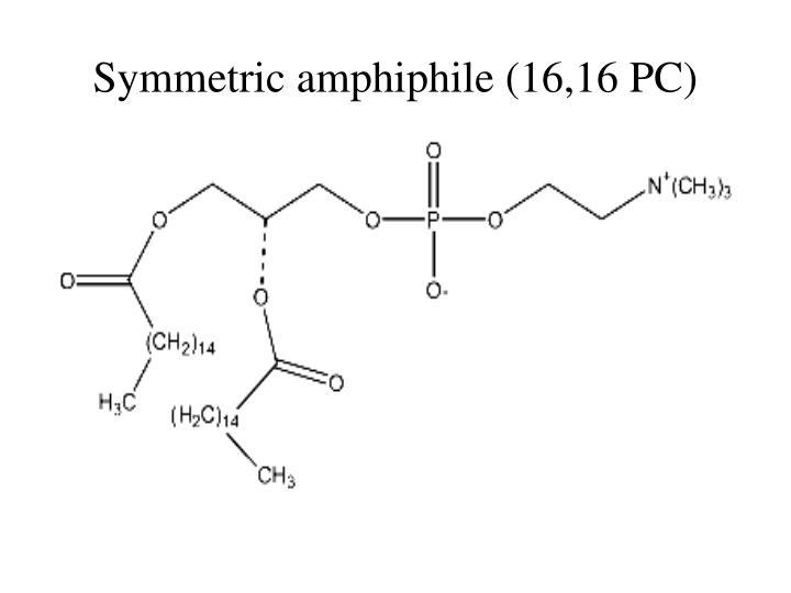 Symmetric amphiphile (16,16 PC)