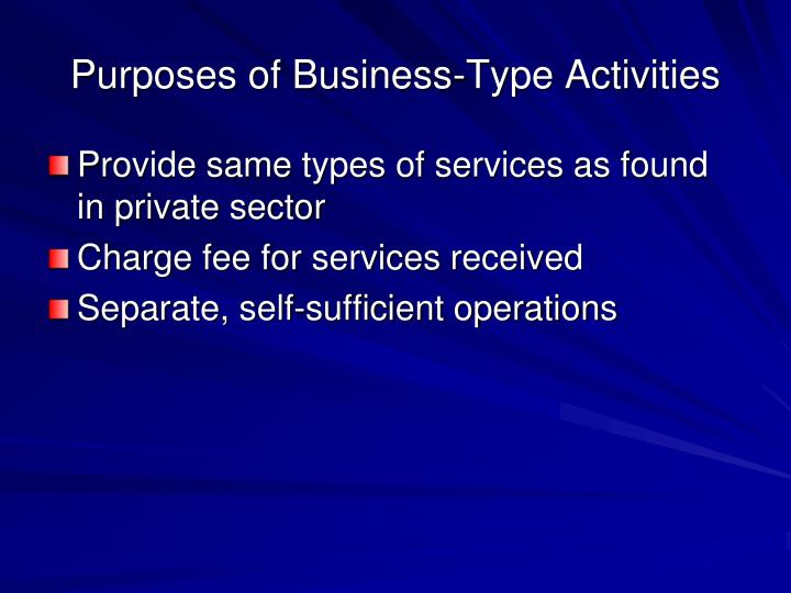 Purposes of Business-Type Activities