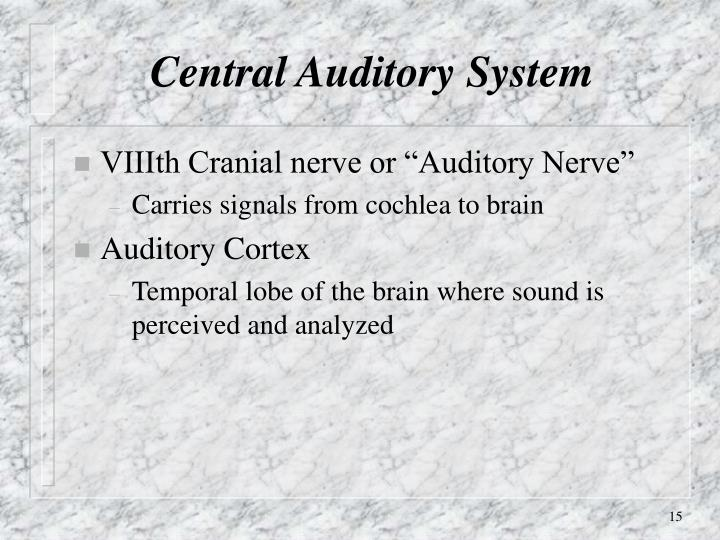 Central Auditory System