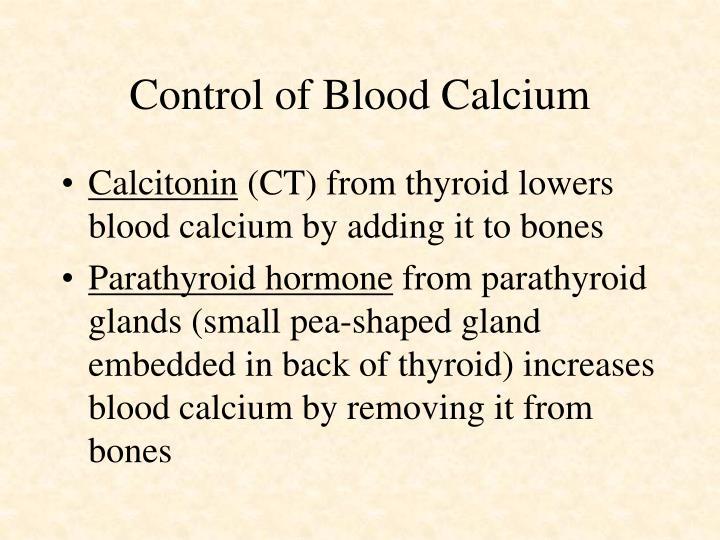 Control of Blood Calcium